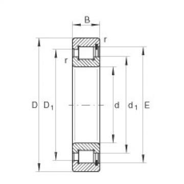 FAG محامل أسطوانية - SL1818/750-E-TB