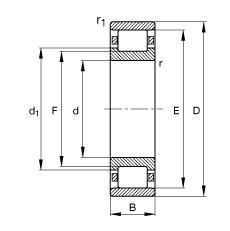 FAG محامل أسطوانية - N317-E-XL-M1