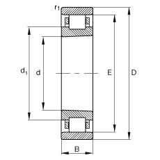 FAG محامل أسطوانية - N1017-K-M1-SP