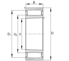 FAG محامل حلقية - C30/800-XL-K-M1B