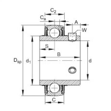 FAG شعاعي إدراج الكرات - UC217-55