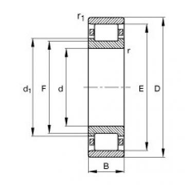 FAG محامل أسطوانية - N217-E-XL-TVP2