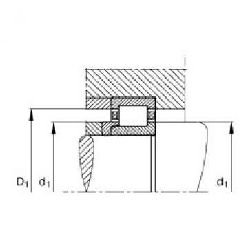 FAG محامل أسطوانية - NJ2217-E-XL-TVP2 + HJ2217-E