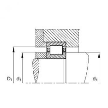 FAG محامل أسطوانية - NUP317-E-XL-TVP2