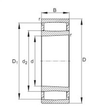 FAG محامل حلقية - C31/710-XL-K-M1B