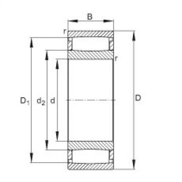 FAG محامل حلقية - C31/710-XL-M1B
